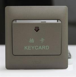 RADIANCE KEY CARD SWITCH WITH TIME DELAY 20A 230V TITANIUM product photo