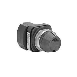 TYPE 4/13 PILOT LIGHT INCAND. 30MM WHITE 24VAC/DC product photo